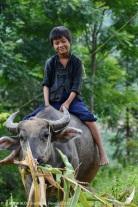 Boy Sapa, Vietnam