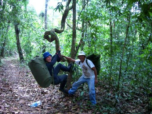 Jungle adventure, Peru