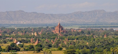 Bagan's pagodas in the midday heat