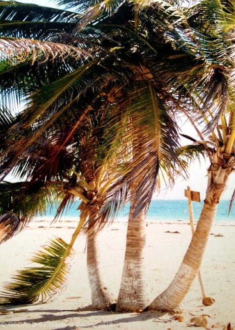 Puerto Escondido - a hidden paradise