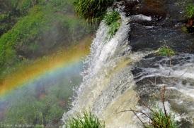 Rainbows appear everywhere