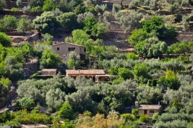Finca Majorca: Beautifully situated in the mountains